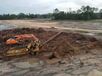 land clearing in progress in jacksonville fl