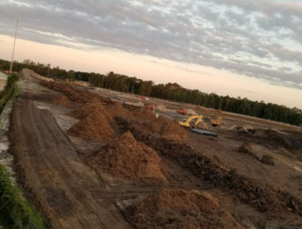 Image of land clearing in Jacksonville fl